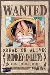 モンキー・D・ルフィの画像