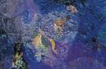 清川あさみの絵本「人魚姫」の画像